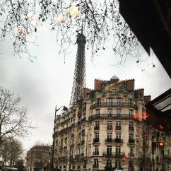 Paris, France - 31 January, 2017