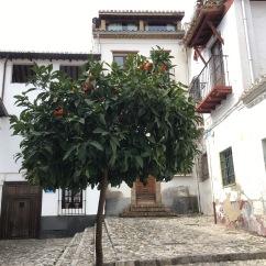 Granada, Spain - 14 February, 2017