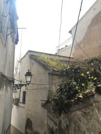 Granada, Spain - 24 February, 2017